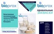 Французские закваски BIOPROX